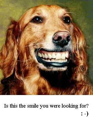 [img]http://www.cs.unb.ca/profs/goldfarb/smile.JPG[/img]